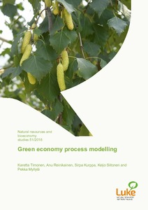 Green economy process modelling